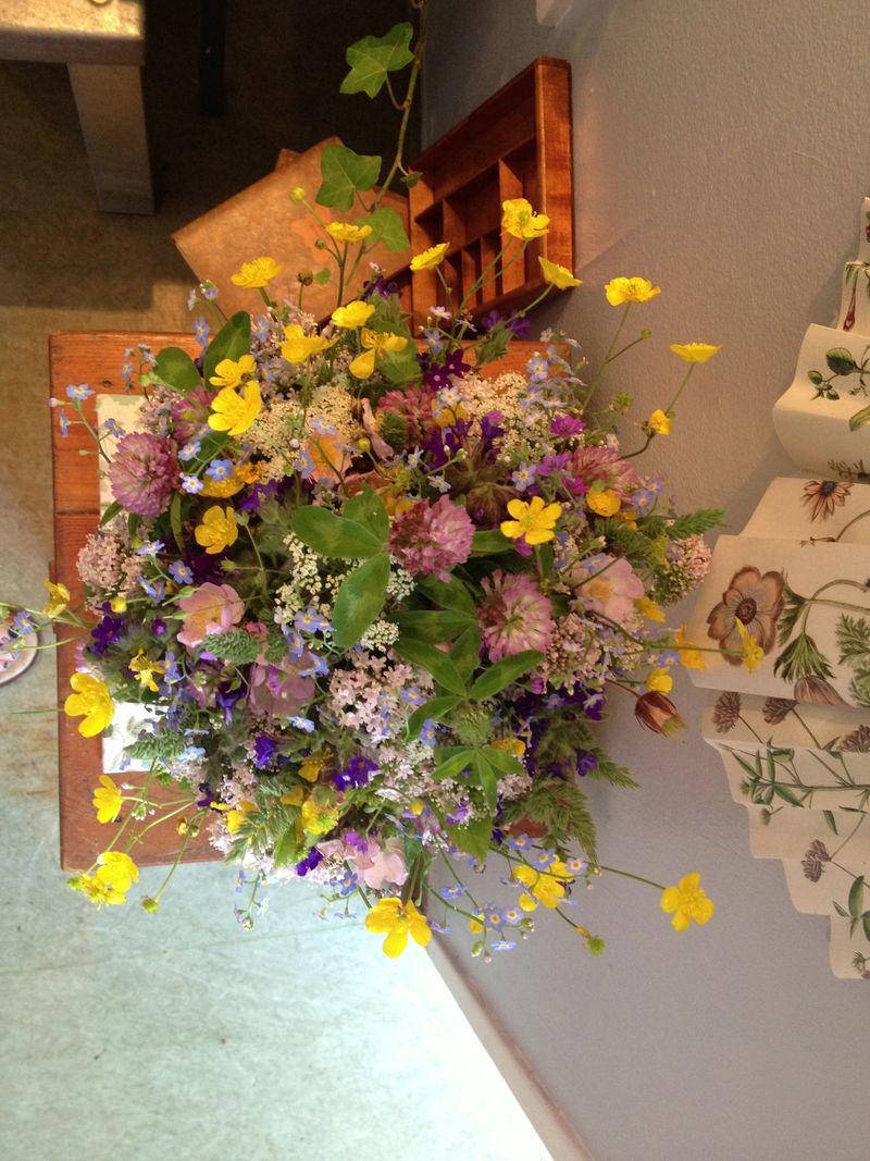 Blomst vild