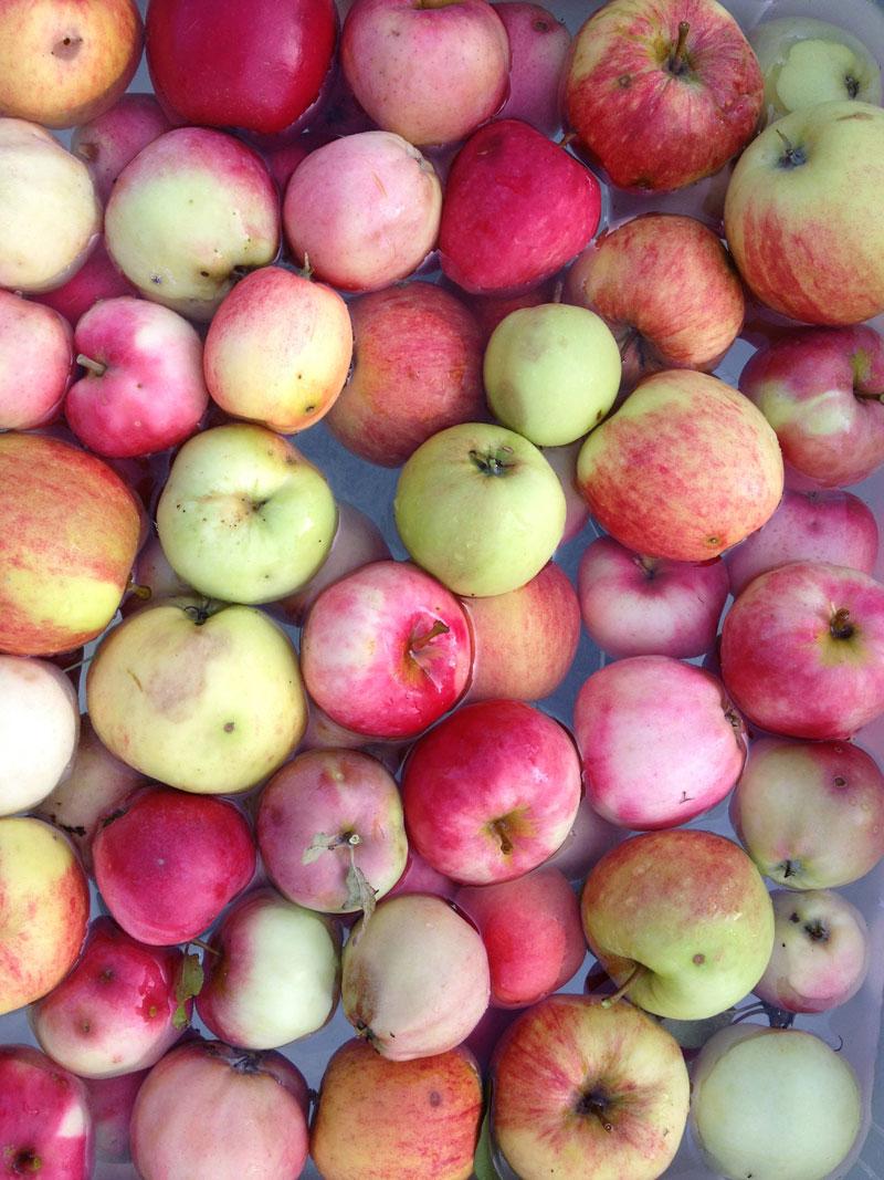 Apple juice from own garden